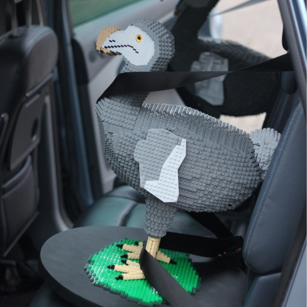 Delivering two more Dodos to the museum. Photo courtesy of Bright Bricks.